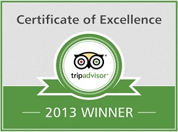 certificate of excellence 2013